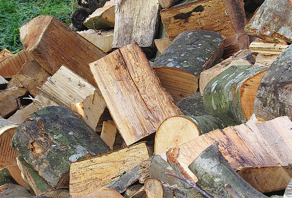 Wood Timber Record Holzstapel Log Growing Stock Fi