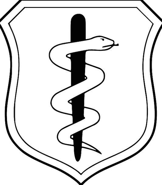 Shield Protection Medical Serpent Health Staff Operate Snake