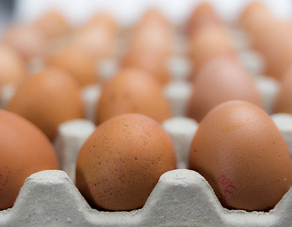 Eggs Spawns Drink Set Food Multiple Manifold Packa
