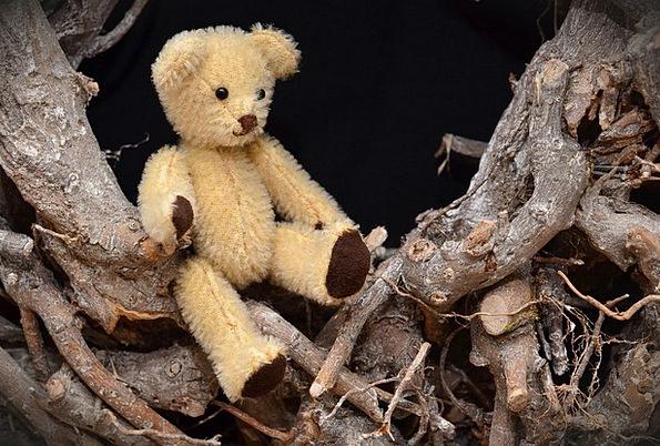 Teddy Bear Teddy Small Minor Hand Labor Cute Attra