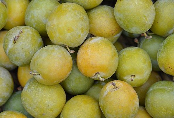 Plums Rewards Drink Food Fruit Ovary Reine Claude