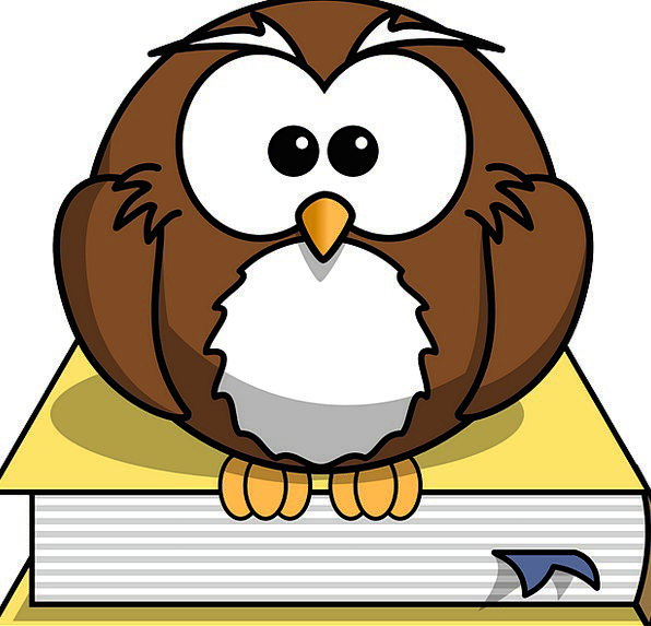 Owl Volume Animal Physical Book Dictionary Literat