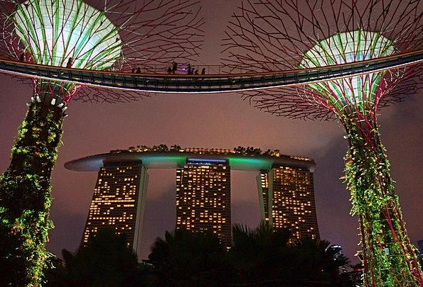 Marina Bay Gardens By The Bay Big Tree Singapore N