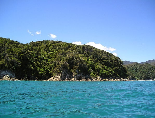 New Zealand Landscapes Marine Nature Water Aquatic