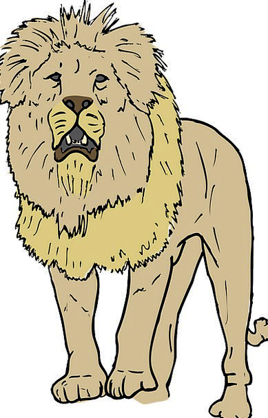 Lion Busy Mane Shock Roaring Isolated King Monarch