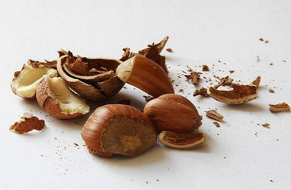 Hazelnuts Drink Mad Food Shell Bomb Nuts Nuclear A