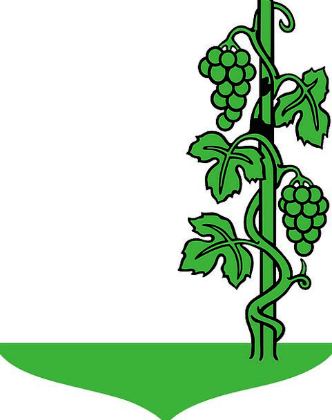 Grapes Drink Lime Food Plants Florae Green Food Vi