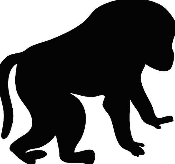 Baboon Primate Archbishop Mandrill Monkey Ape Free