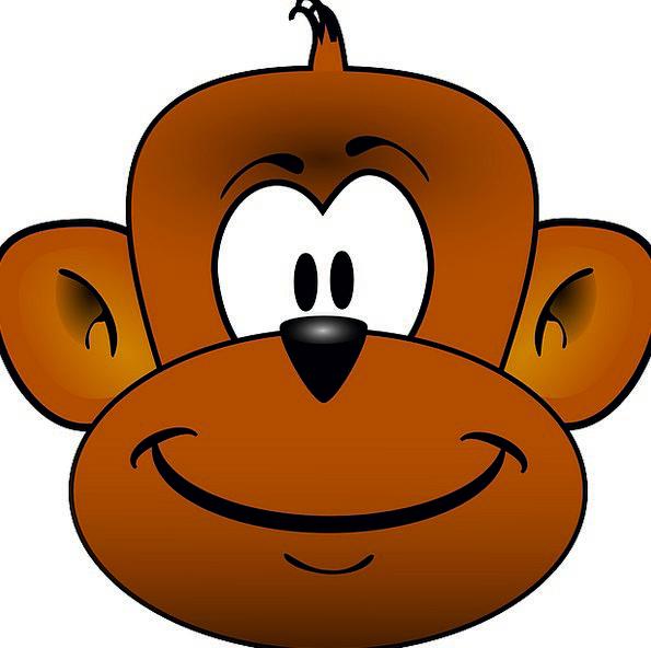 Monkey Skull Ape Head Free Vector Graphics Animal