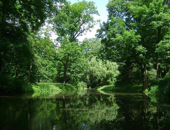 Warsaw Landscapes Nature Park Common Poland Summer