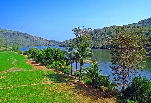 Gangavali River Groundnut Crop Tidal Swell Western