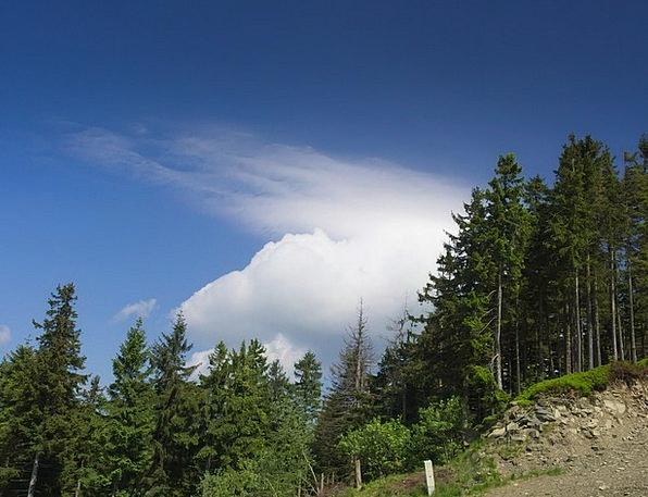 Cloud Mist Landscapes Crags Nature Forest Woodland