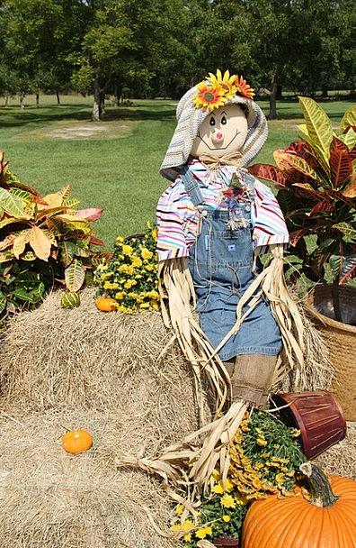 Scarecrow Figure Gourds Pumpkins Fall Reduction Ha