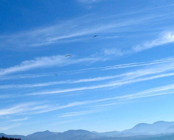Sky Vapors Blue Azure Clouds Meteorology Outdoors