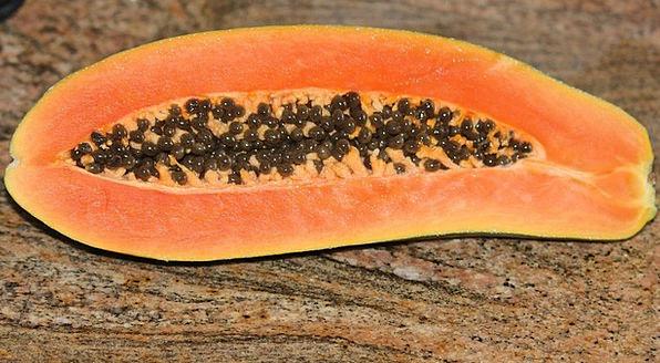 Papaya Pawpaw Tropical Fruit Exotic Unusual Seeds