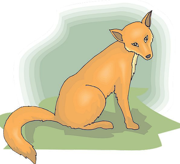Head Skull Carroty Fox Deceive Orange Tail End Fur