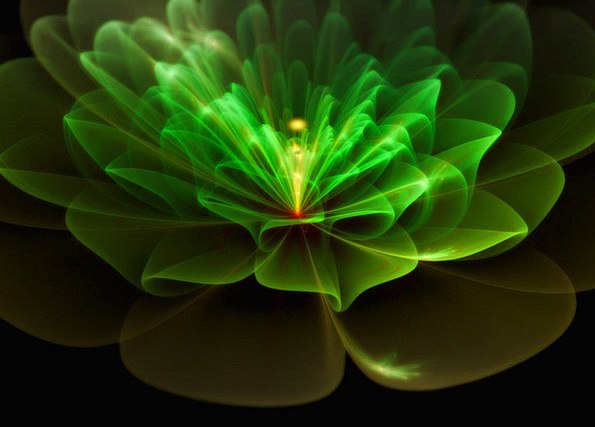 Fractal Textures Floret Backgrounds Green Lime Flo