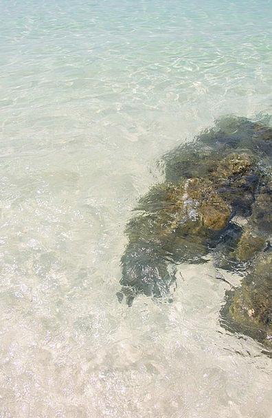 Sea Marine Vacation Seashore Travel Water Aquatic