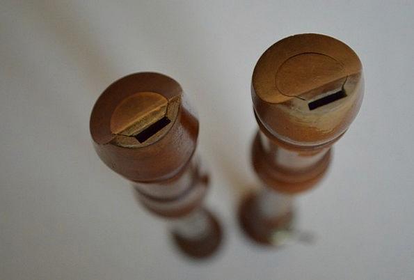 Recorder, Plotter, Music, Melody, Woodwind, Wooden Flute