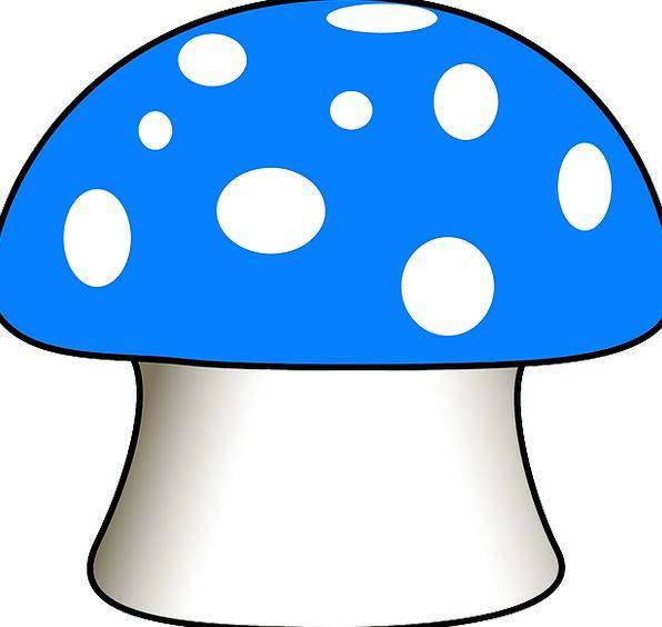 Mushroom Burgeon Blue Azure Fly Agaric Fairy Tail