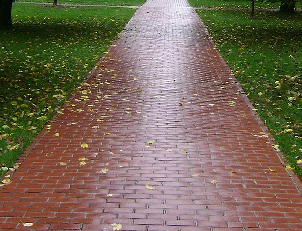 Trail Track Elements Paved Cemented Bricks Walking