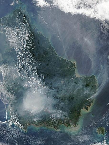 Borneo Satellite Image Forest Fire Fire Passion La