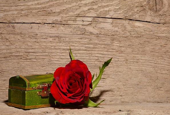 Rose Design Bloodshot Flower Floret Red Treasure C