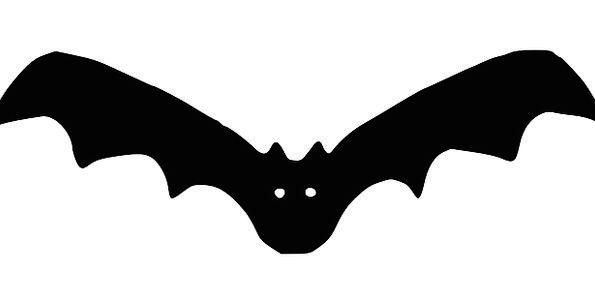 Bat Racket Parasite Cartoon Animation Vampire Hall
