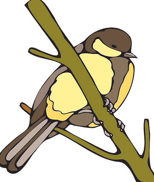 Yellow Creamy Fowl Branch Division Bird Nut Enthus