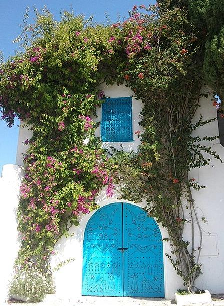 Tunisia Entrance Flowers Plants Door Goal Goalmout
