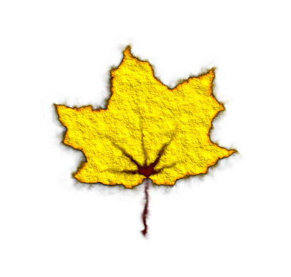 Yellow Creamy Textures Backgrounds Leaf Foliage Ma