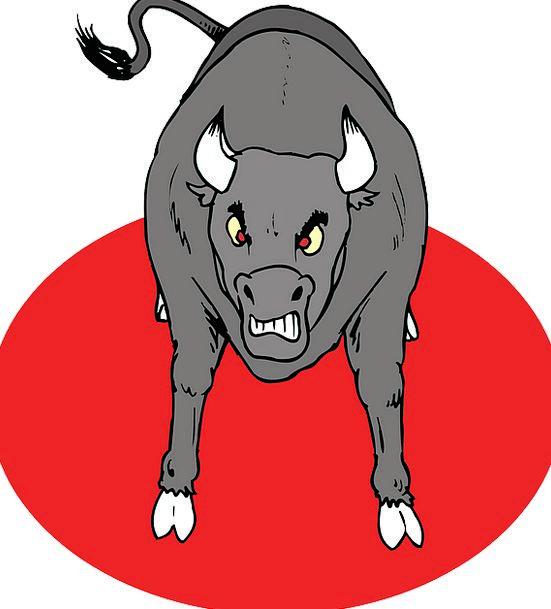 Angry Annoyed Decree Horns Sirens Bull Animal Phys