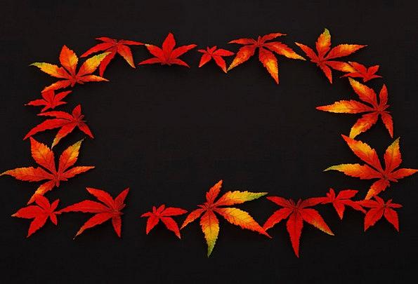 Autumn Textures Contextual Backgrounds Dark Dim Ba