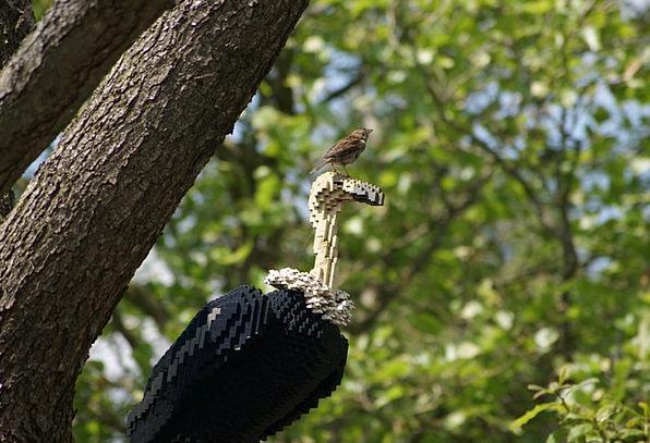 Lego The Vulture The Sparrow Pads Cloths View Spri
