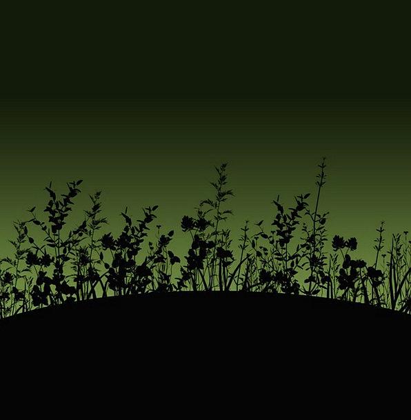 Flower Floret Landscapes Outline Nature Dusk Twili