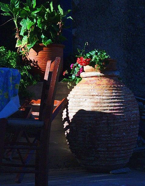 Amphora Earthenware Potty Ceramic Flowers Plants A