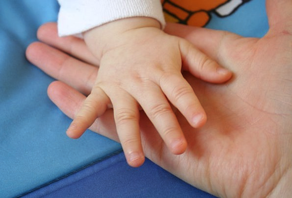 Handle Grip Pointers The Hand Hands Family Touch T