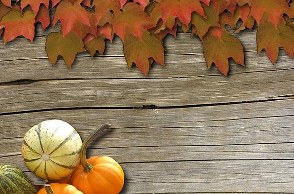 wine mauve textures contextual backgrounds autumn fall