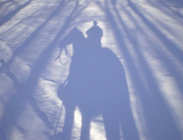 Cowboy Unreliable Gumshoe Horse Mount Shadow Man S
