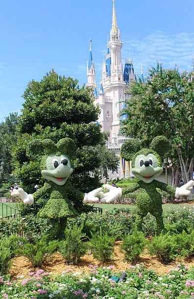 Cinderella'S Castle Disney Walt Disney World Disne