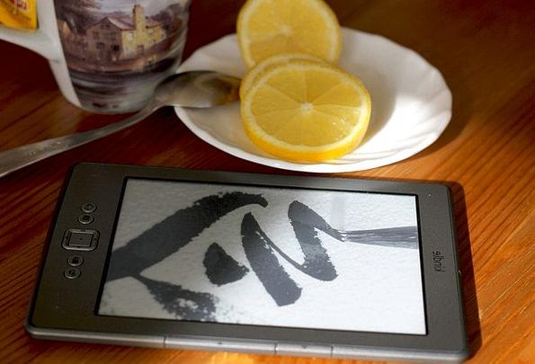 Kindle Spark Ereader Ebook E-Book Eink Electronic
