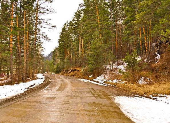 Forest Woodland Landscapes Infrastructures Nature