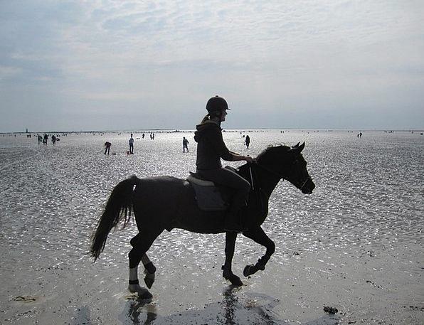 Beach Seashore Vacation Travel Atlantic Reiter