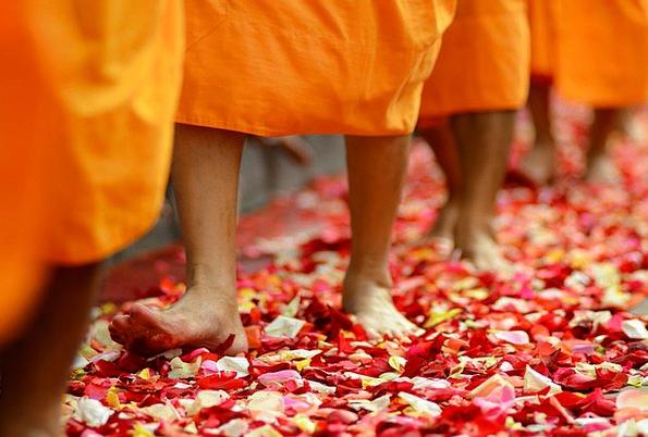 Buddhism Friars Buddhists Monks Religion Walk Gait
