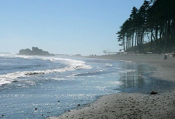 Ruby Beach Landscapes Nature Usa Washington Scener