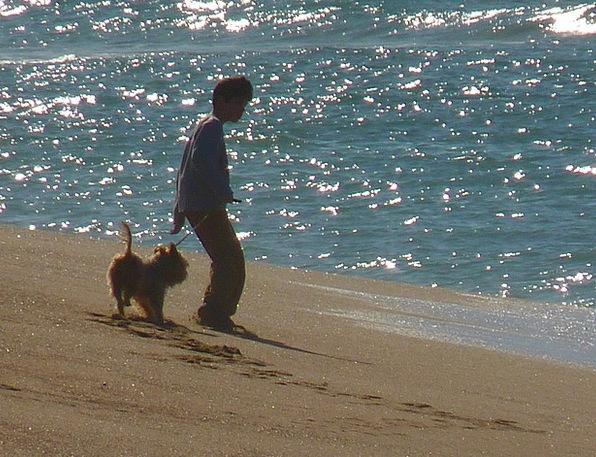 Beach Seashore Vacation Marine Travel Child Youngs