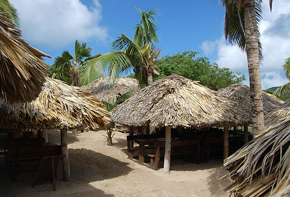 Hut Shed Landscapes Nature Thatched Caribbean Palm