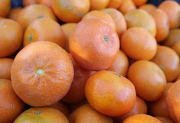 Oranges Drink Ovary Food Food Nourishment Fruit Ci