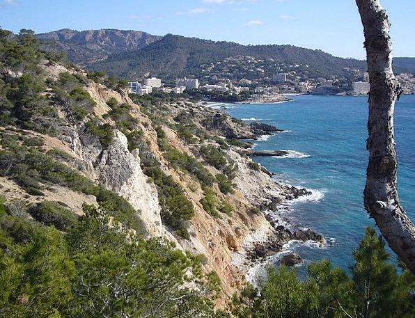 Mallorca Vacation Reserved Travel Ocean Marine Boo