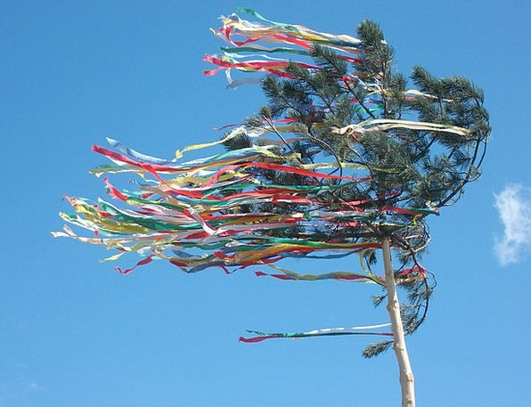 Maypole Column Festivity Tree Sapling Celebration